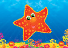 starfish иллюстрация штока