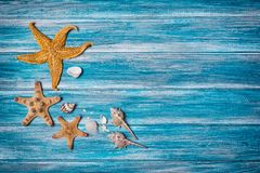 Starfish And Seashells On Blue Background As Concept Of Vacation Time Royalty Free Stock Image