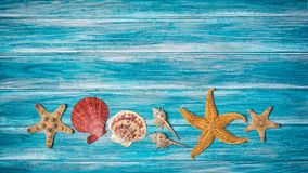 Starfish And Seashells On Blue Background As Concept Of Vacation Time Stock Images