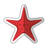 Starfish animal isolated icon. Vector illustration design Royalty Free Stock Image
