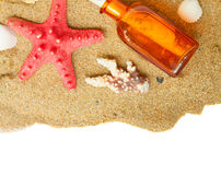 Starfish ans seashells Stock Photos