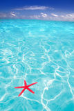 Starfish as summer symbol in tropical beach Royalty Free Stock Images