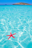 Starfish as summer symbol in tropical beach Royalty Free Stock Photos