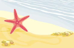 Starfish auf dem sandigen Strand Lizenzfreie Stockbilder