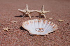 Starfish auf dem Strand Lizenzfreie Stockfotos