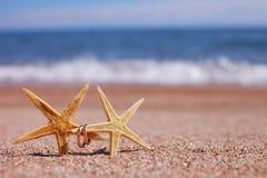 Starfish auf dem Strand Lizenzfreies Stockfoto