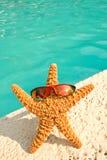 Starfish auf Ferien durch Pool Lizenzfreie Stockfotografie