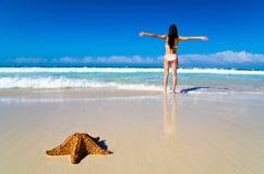 Starfish auf tropischem Strand stockbild
