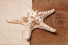 Starfish on a background of a wooden table and sacking. Starfish on a wooden table, souvenir Royalty Free Stock Photos