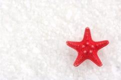 Starfish on bath salt Stock Image