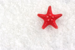 Starfish on bath salt Stock Images