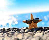 Starfish. On the beach with glasses royalty free stock images