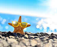 Starfish. On the beach with glasses royalty free stock photography