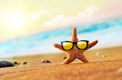 Starfish. On the beach with glasses royalty free stock photo