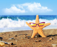 Starfish. On the beach with glasses stock photos