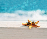 Starfish. On the beach with glasses stock image