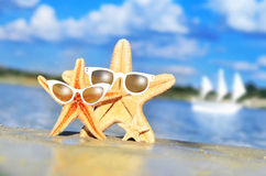 Starfish. On the beach with glasses stock photo