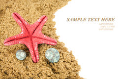 Starfish on beach sand Royalty Free Stock Photography