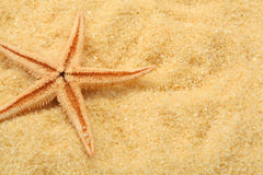 Starfish and beach sand Royalty Free Stock Photo