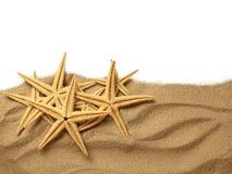 Starfish on Beach Sand Stock Photos