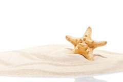 Starfish on beach sand. Summer background Stock Photography