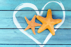 Starfish. On the beach in summer stock image