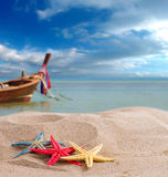 Starfish on the beach in Thailand Royalty Free Stock Images