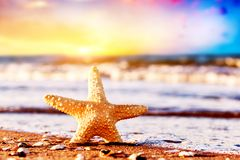 Starfish on the beach at warm sunset. Travel, vacation, holidays. Starfish on the exotic beach at warm sunset, ocean waves. Travel, vacation, holidays concepts Stock Photo