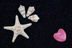Starfish on black sand. A white starfish, seashells and a heart on black sand Stock Photography
