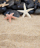 Starfish black stones and sand Stock Photo