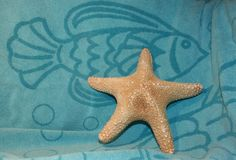 Starfish on Blue. This photo shows a starfish on a blue beach towel with a dark blue fish royalty free stock images