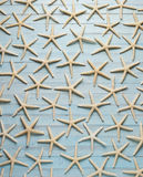 Starfish Blue Wood Background Royalty Free Stock Photos