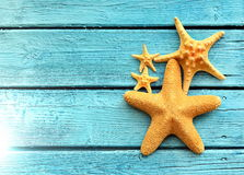 Starfish on blue wooden background. Top view . Stock Photo