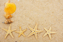 Starfish Border Royalty Free Stock Images