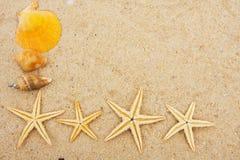 Starfish Border royalty free stock images