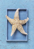 Starfish in the box on handmade paper Royalty Free Stock Images