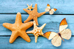 Starfish and butterfly on the blue wooden background. Summer concept. Stock Images