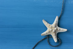Starfish with cable against blue background Royalty Free Stock Photos