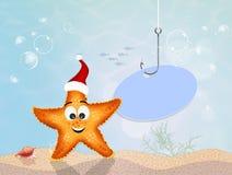 Starfish celebrate Christmas. Illustration of starfish celebrate Christmas Royalty Free Stock Photography
