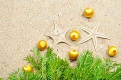 Starfish with Christmas balls and fir tree on the sand Stock Photos