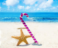 Starfish with Christmas decoration - holiday concept Royalty Free Stock Photo