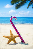 Starfish with Christmas decoration - holiday concept Stock Photos