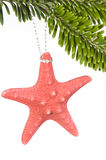 Starfish on Christmas tree Royalty Free Stock Photo