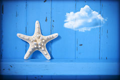 Starfish Cloud Blue Background. A blue painted rustic wood background that has a starfish and a cloud Royalty Free Stock Image
