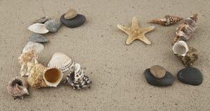 Starfish and cockleshells Stock Photos