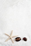 Starfish and cowrie on the white sand background Royalty Free Stock Photos