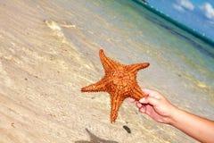 Starfish in der Hand auf Strand Lizenzfreies Stockbild