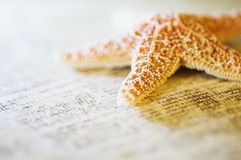 Starfish on Document Royalty Free Stock Image