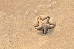 Starfish drawn on the beach sand being washed away by a wave. Foaming sea wave coming to wash a picture on wet yellow royalty free stock photo