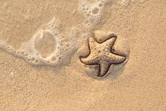 Starfish drawn on the beach sand being washed away by a wave. Foaming sea wave coming to wash a picture on wet yellow royalty free stock photos
